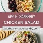 Pinterest pin for shredded chicken salad with cranberries and apples.