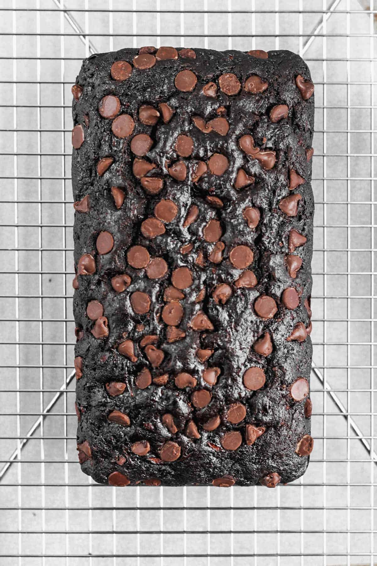 Baked chocolate zucchini bread cooling on a metal cooling rack.